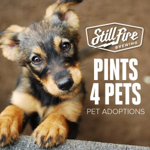 Puppies 4 Pints