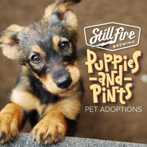 Puppies and Pints- Costume Contest!